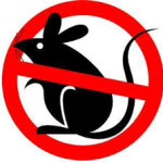 homemade-mouse-repellent
